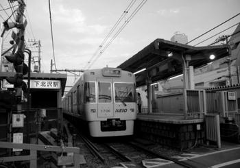 11シモキタ13.JPG